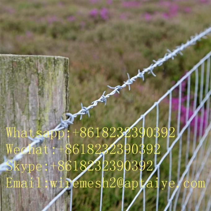 Fences for farm barbed wire type protect animals sucurity fence