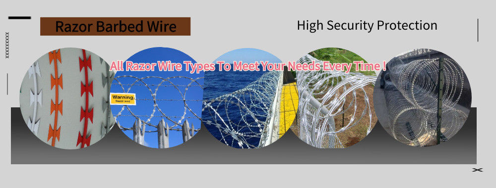China best Razor Barbed Wire on sales