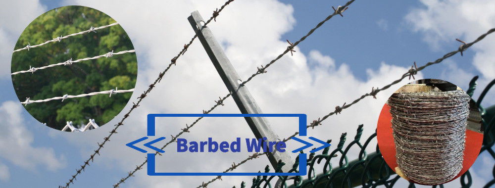 China best Security Barbed Wire on sales