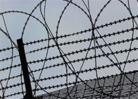 Straight Razor Galvanized Barbed Wire Mesh Frightening And Stopping Fencing 3 Or 4 Strands