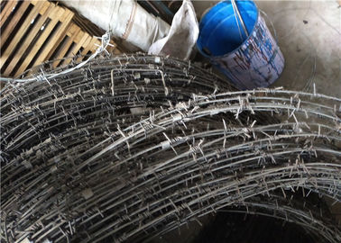 China Barbed Tape Concertina Gaucho Barbed Wire Prison High Security Spiral Barbed Wire Fence factory